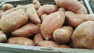 sweet-potatoes-1310287_1920